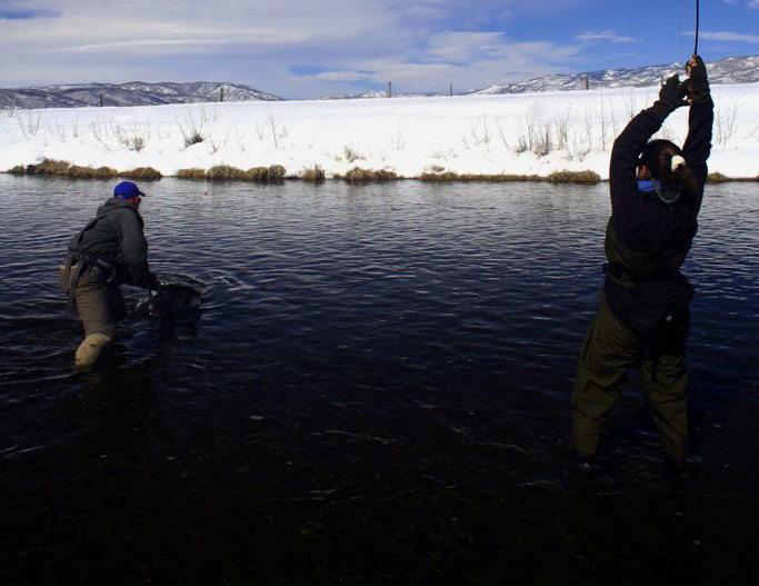 Bucking rainbow outfitters fishing gallery steamboat for Yampa river fishing report