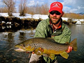 Bucking rainbow outfitters home steamboat springs co for Yampa river fishing report